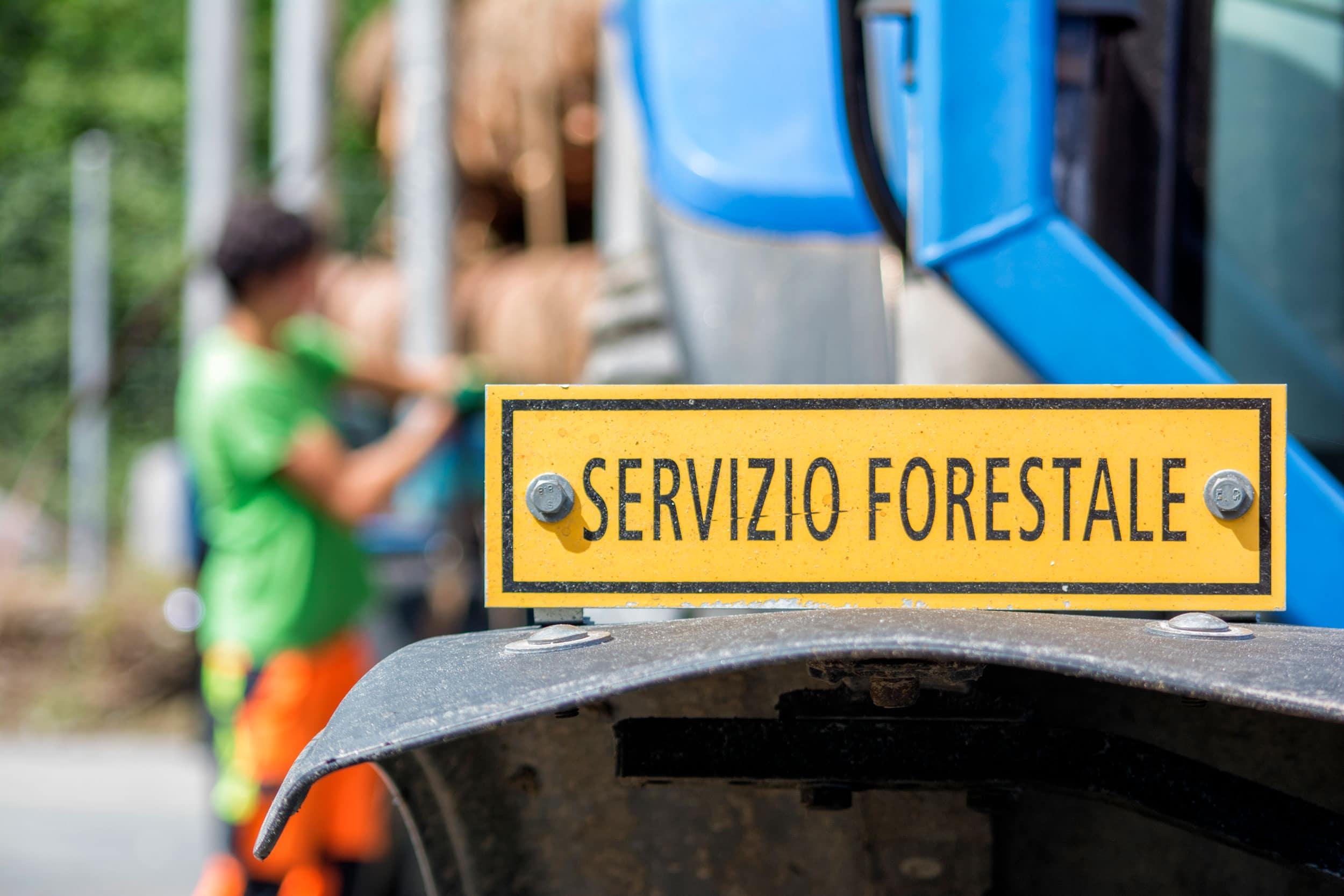 servizio-forestale